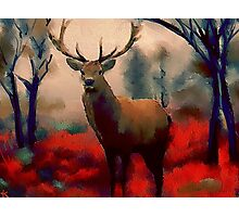 Red Stag in the Forest Photographic Print