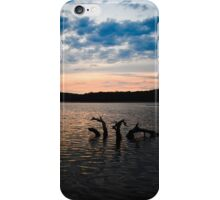 That dead Conjola tree.  iPhone Case/Skin