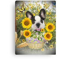 French Bulldog Sunshine and Daisies Canvas Print