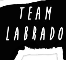 Team Labrador Sticker