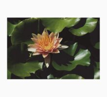 Exotic Colors - A Soft Coral Waterlily Kids Tee