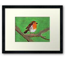 Round Robin Framed Print