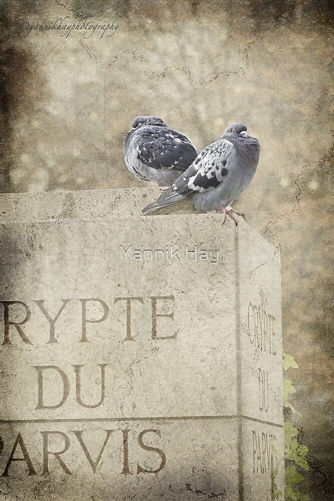 Guardians of the Crypt - Paris - France by Yannik Hay