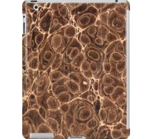 Old Marbled Paper 02 iPad Case/Skin