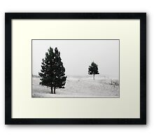 Trees In The Mist Framed Print