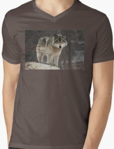 Dominant Wolf Mens V-Neck T-Shirt