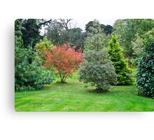 Leith Hall Gardens 2 (Huntly, Aberdeenshire, Scotland) Canvas Print