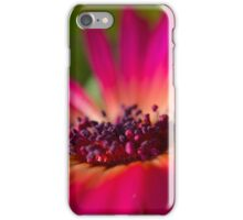 Daisy Stone in Pink - Living Community iPhone Case/Skin