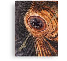 tree shaman Canvas Print