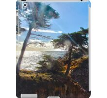 The Lonely Cypress Tree on 17 mile drive iPad Case/Skin