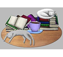 Cat Nap with Books & Tea (White & Tabby) Photographic Print