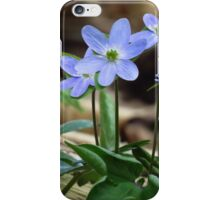 Springtime Blues  iPhone Case/Skin