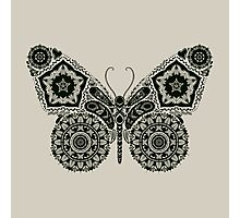 Ornamental Butterfly Photographic Print