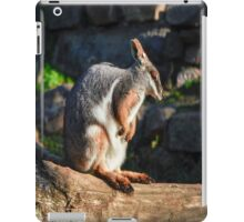 Rock Wallaby morning time iPad Case/Skin