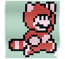 Pixel raccoon Mario Poster