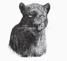 Panther  by illustrxn