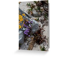Rock and Beauty Greeting Card