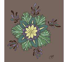 Sea Blossom Photographic Print