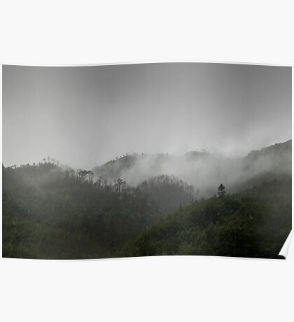 Beautiful moody mountain landscape cloud forest Poster