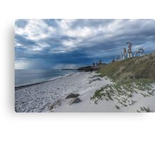 Cottesloe Sculptures Metal Print