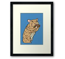 Hungry, Hungry Hamster Framed Print