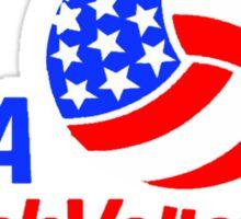 Team USA Beach Volleyball  Sticker