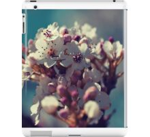 Spring Blossoms II iPad Case/Skin