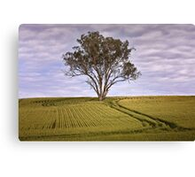 Green Field Canvas Print