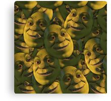 OGRES HAVE LAYERS  Canvas Print