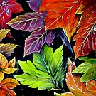 Colours of Autumn  by Linda Callaghan