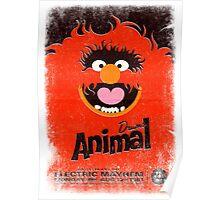 Drums Animal Poster