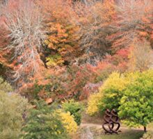Autumn splendour, Adelaide Hills, South Australia 2 Sticker