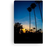 Palm Trees During a Sunset Canvas Print
