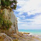 Sandstone Cliffs, North island, New Zealand by Barbara  Brown