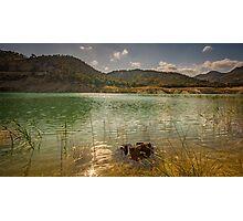 Amadorio swamp Photographic Print
