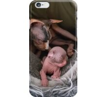 Mom and her kitten sphynx sleeping iPhone Case/Skin