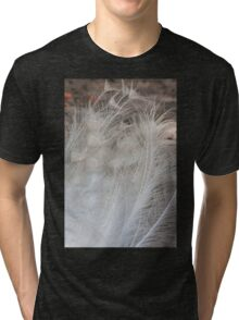 peacock feathers Tri-blend T-Shirt