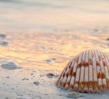 Sea Shell on the Beach Sticker