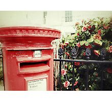 Postbox and Camellias Photographic Print