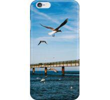 Birds Fly - Koserow iPhone Case/Skin