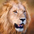 Mr Lion! by Lyn Darlington