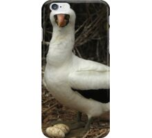 Nazca Boobie and Eggs iPhone Case/Skin