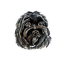 Black dog Photographic Print