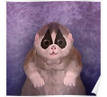 The Slow Loris Poster