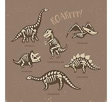 Dinosaur skeletons Photographic Print