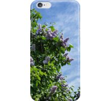 lilac bloom iPhone Case/Skin