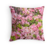 """Azaleas""  Throw Pillow"