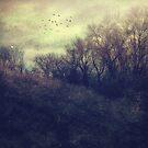 Seasonal by Angela King-Jones