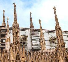 thousands of statues. Duomo de Milano. by terezadelpilar~ art & architecture