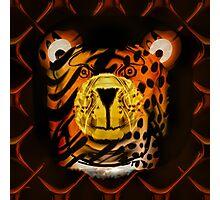 Kindly Tiger Photographic Print